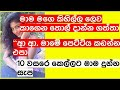 Sinhala Wal Katha Official Channel| First Logo Video |Sinhala Wal Katha|Wala Katha|Hukanawa|Story