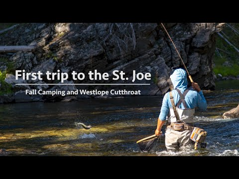 First trip to the Joe - Fall Camping and Westslope Cutthroat Fishing