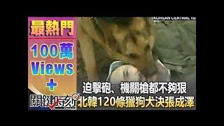 迫擊砲、機關槍都不夠狠 北韓120條獵狗「犬決」張成澤!1021213-4