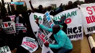 Numan youths take protest to National Assembly amidst tears - VIDEO
