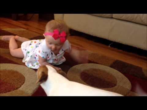 תינוקת לומדת לזחול מהמורה הטוב בעולם