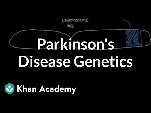 Genetics and Parkinson's disease (video) | Khan Academy