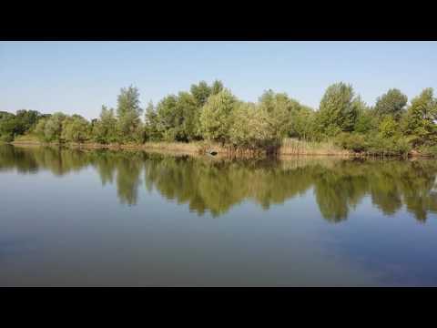 Озера Волгоград Лебяжье озеро достопримечательности Волгограда
