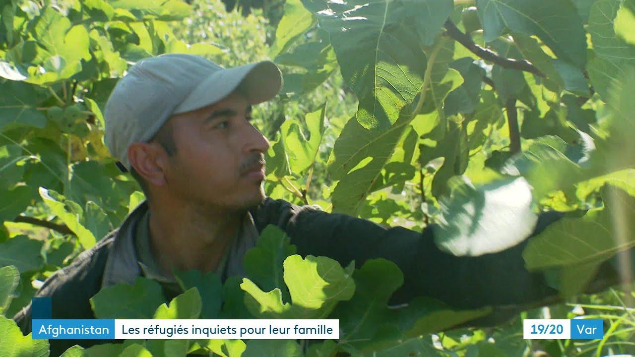 Afghanistan : un réfugié toulonnais inquiet de la situation