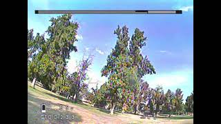 FPV flight training - Three trees as a reference point for power loops and dives