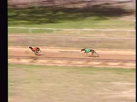 Race 32