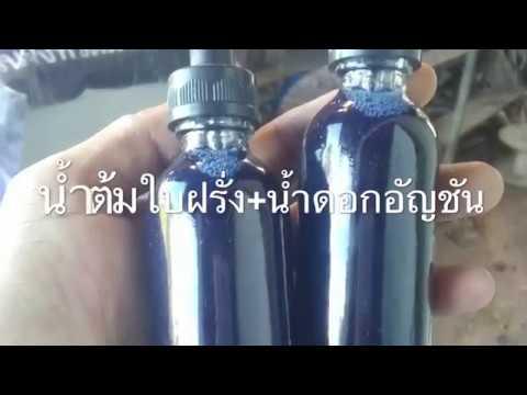 การแพทย์แผนไทยกับปรสิต