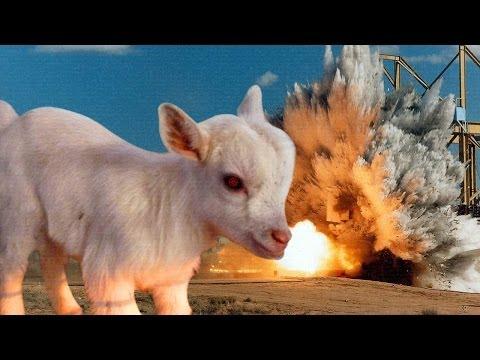 Goat Simulator Walkthrough Evil Goat By Ihascupquake Game Video