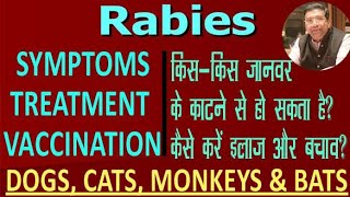 Symptoms Treatment and Prevention of Rabies | Dogs, Cats, Bats and Monkey bites Need Rabies Vaccine