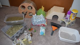 What You Need Before Getting A Chinchilla