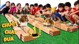 Tony | Thú Cưng Đại Chiến - Hamster Race