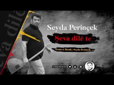 Seyda Perinçek - Şeva Dile Te klip izle