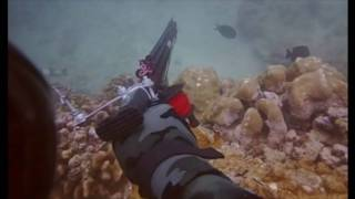 HKD 1 Spearfishing Hawaii