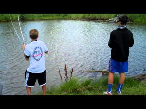 Crankbaits in Deep Ponds