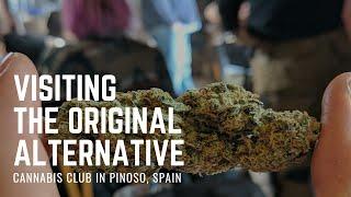 The Original Alternative Cannabis Club, Spain