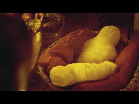 Why Were Mummified Babies Found in Tutankhamun's Tomb?