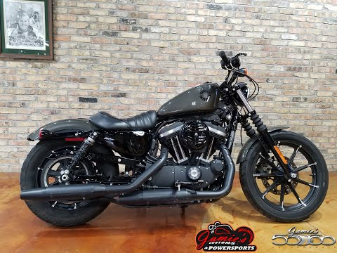 2019 Harley-Davidson Iron 883™ in Big Bend, Wisconsin - Video 1