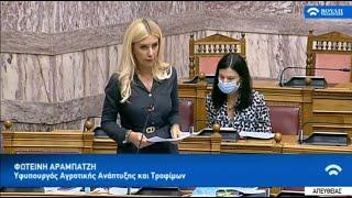 """Η ΥφΑΑΤ, Φ. Αραμπατζή για τα μέτρα στήριξης των πληγέντων από τον """"Ιανό""""- Απάντηση Επίκαιρης"""