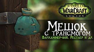 Мешок с Трансмогом #2, World of Warcraft