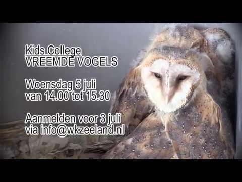 Bekijk details van Promofilmpje Kids College Vreemde vogels