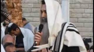"""ברכת החמה עם מו""""ר רבי דוד חי אבוחצירא שליט""""א"""