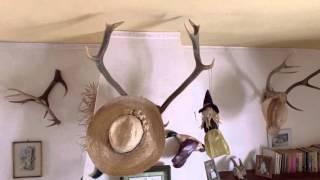 Video del alojamiento Yerbaluisa