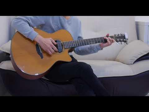 六哲 - 畢竟深愛過 (acoustic guitar solo)