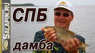 Ловля рыбы на дамбе финский заливать