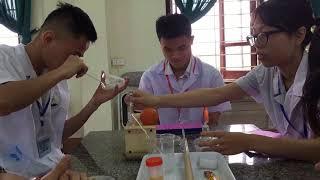 thí nghiệm ký sinh trùng trong nước tiểu (parasitic experiments in urine) Duc kul