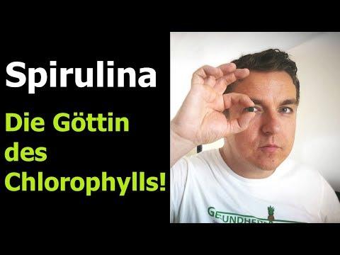 Meine Spirulina Erfahrung - Spirulina Wirkung