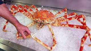 Japanese Street Food - $500 GIANT SPIDER CRAB Seafood Okinawa Japan