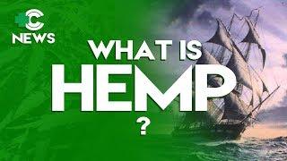 What is Hemp?