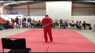 Wushu-boxeo borracho(zui quan)exhibición