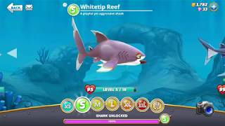 Hungry Shark World The Game Video 21