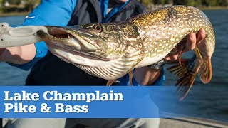 Lake Champlain Pike and Bass | S15 E06