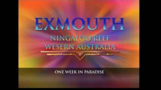 preview picture of video 'Exmouth fishing Feb 2009. It doesn't get better than this, Apparently.'