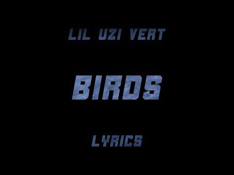 Lil Uzi Vert - Birds (Lyrics)