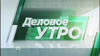 ка де бо по телевидению  НТВ программа Деловое Утро  Кадебо Джульбарс