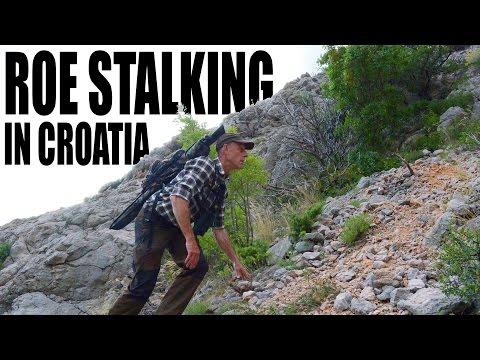 Roebuck hunting in Croatia