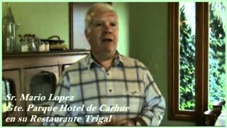 preview picture of video 'Restaurante Trigal de Parque Hotel Boutique Carhue, Lago Epecuen.wmv'