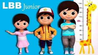 Getting Taller Song   Original Kids Songs   By LBB Junior