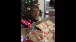 Девочке подарили котенка на Рождество