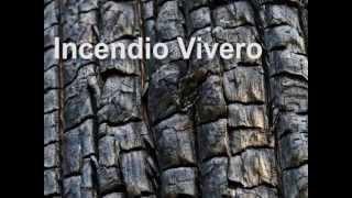 preview picture of video 'Incendio Vivero Claromecó - 31 de Diciembre de 2000'