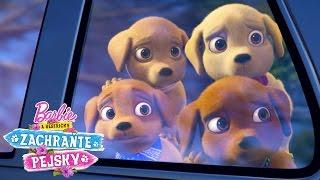 Pejsci se ztratili! | Barbie a Sestřičky Zachraňte Pejsky | Barbie