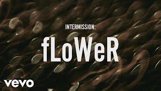 ZAYN - INTERMISSION: fLoWer (Lyric Video) - Video Youtube