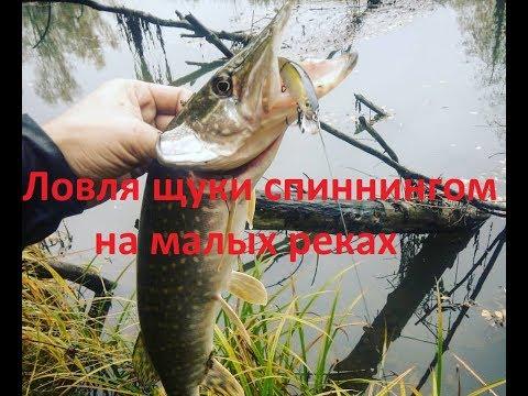 Рыбалка в красноярске весной на щуку