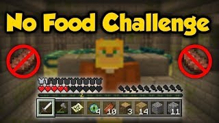 ATTEMPT: Can You Beat Minecraft Without Eating (Or Dying)