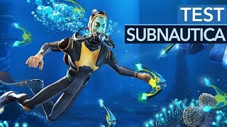 Subnautica im Test - Das beste Singleplayer-Survivalspiel?