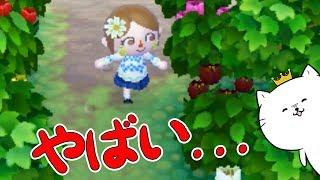 とび森2~3日放置したら村がぁ...!とびだせどうぶつの森amiibo+実況プレイ