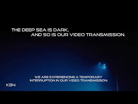 Live HD stream of never before seen seafloor 3,000 meters deep.